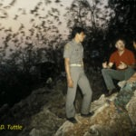 Merlin Tuttle observing emergence of Asian wrinkle-lipped bats with game warden and interpreter at Khao Chang Pran Cave in Thailand during his return visit 10 years after gaining the site's protection. Conservation