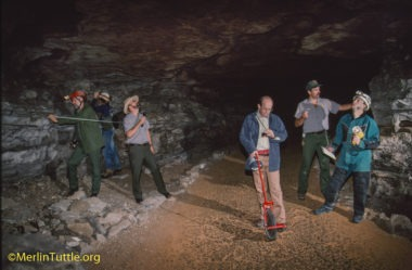 Kentucky's Mammoth Cave National Park has plenty to offer the adventurous visitor.